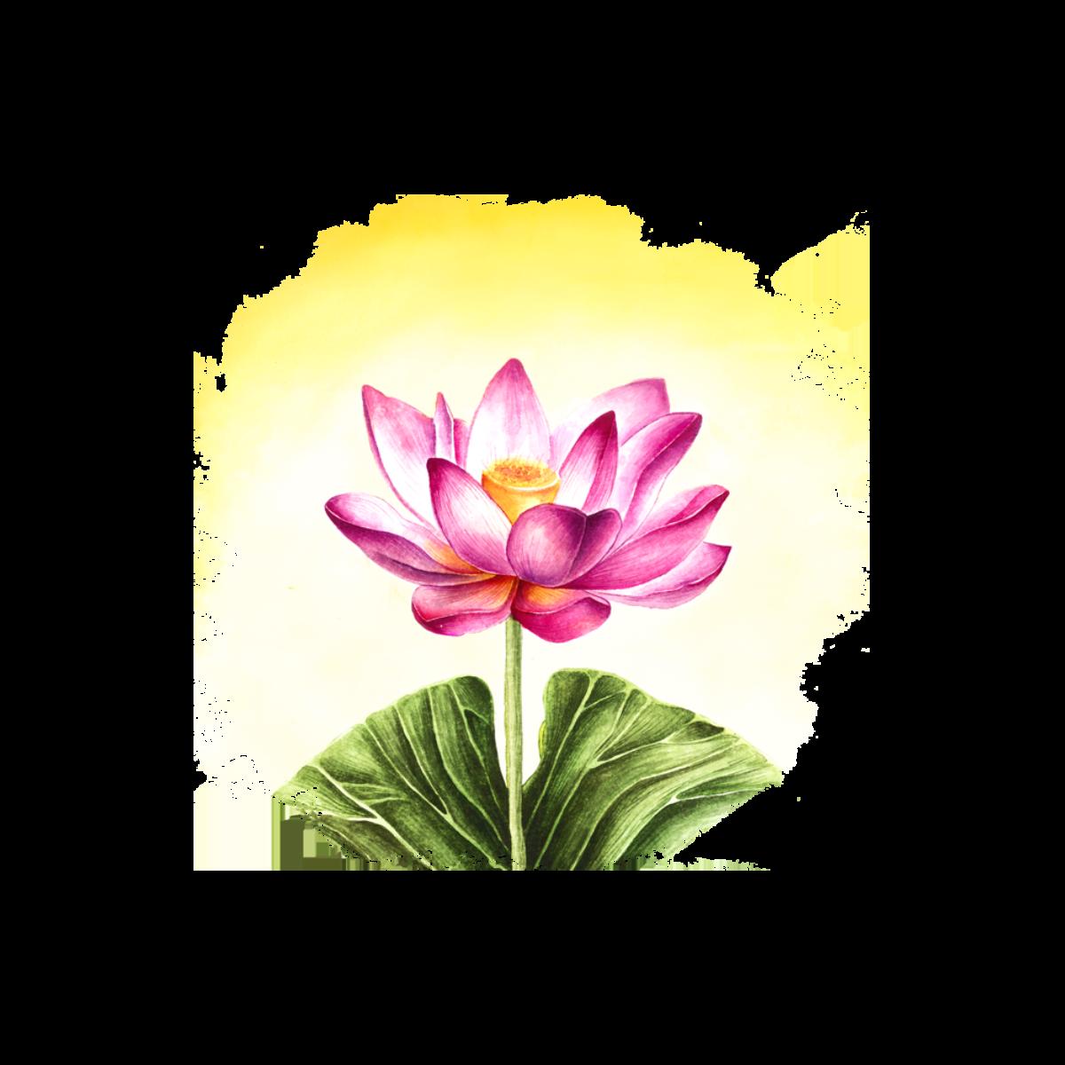 https://proautism.ru/wp-content/uploads/2019/06/1.-LOGO-цветок-сайт-1-1200x1200.png